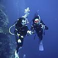 Takezawa_divers