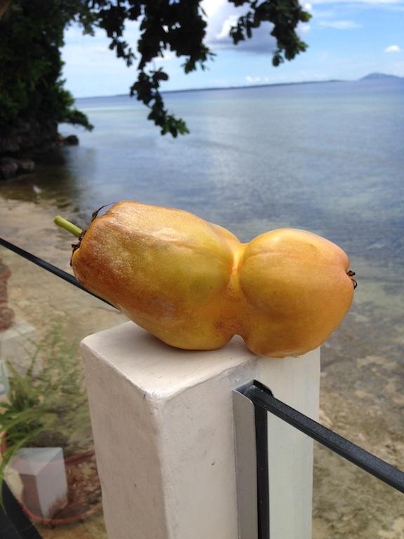 Fruite_060